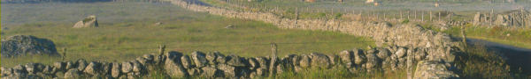 Les randonnées vers et depuis le Refuge du Moure (Lozère)