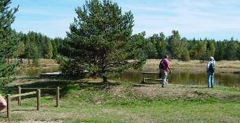 L'étang de l'Auradou, Lozère