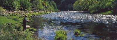Pêche en Allier